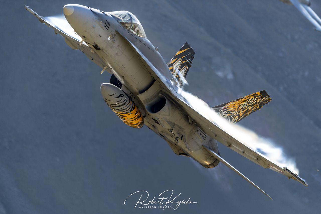 Boeing F/A-18C HORNET  -  © by Robert Kysela